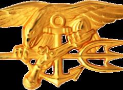 350px-US_Navy_SEALs_insignia