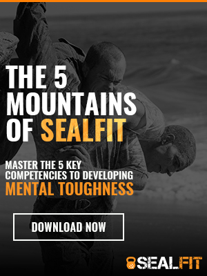 Free Weekly Workout Archives - SEALFIT